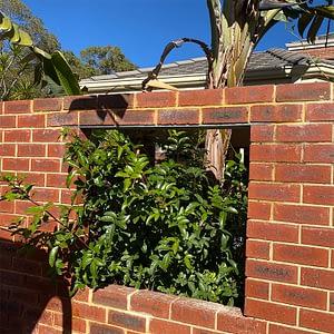 Wattle Grove Brick Repairs #1