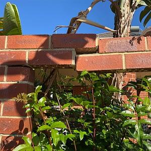 Wattle Grove Brick Repairs #7